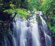 Ellinjaa-Falls.jpg